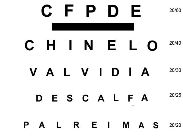 Teste oftalmológico para torcedores do Palmeiras