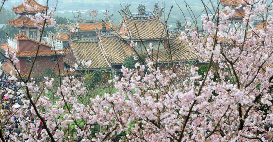Cerejeira em plena floração cobrem templo taoísta em Taiwan