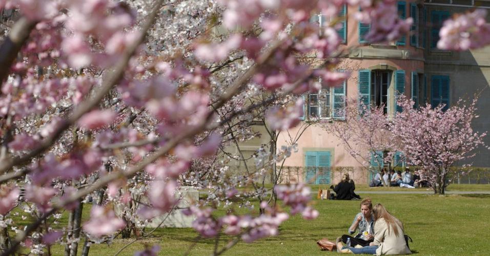 Pessoas relaxam em parque entre as cerejeiras floridas, em Lausanne (Suíça)