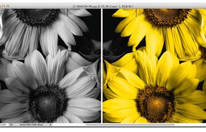 Pacotão de dicas do Photoshop ensina mais de 15 efeitos artísticos