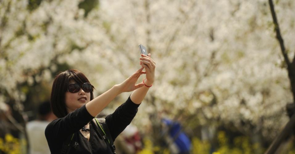Mulher usa smartphone para fotografar cerejeiras em flor no parque Gucum, em Shangai, na China