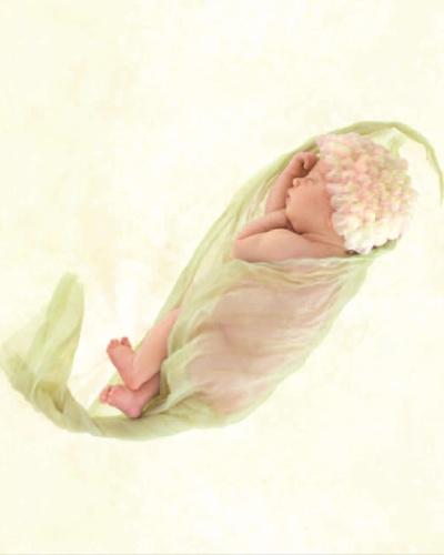 """Foto de Anne Geddes do livro """"Beginnigs"""""""