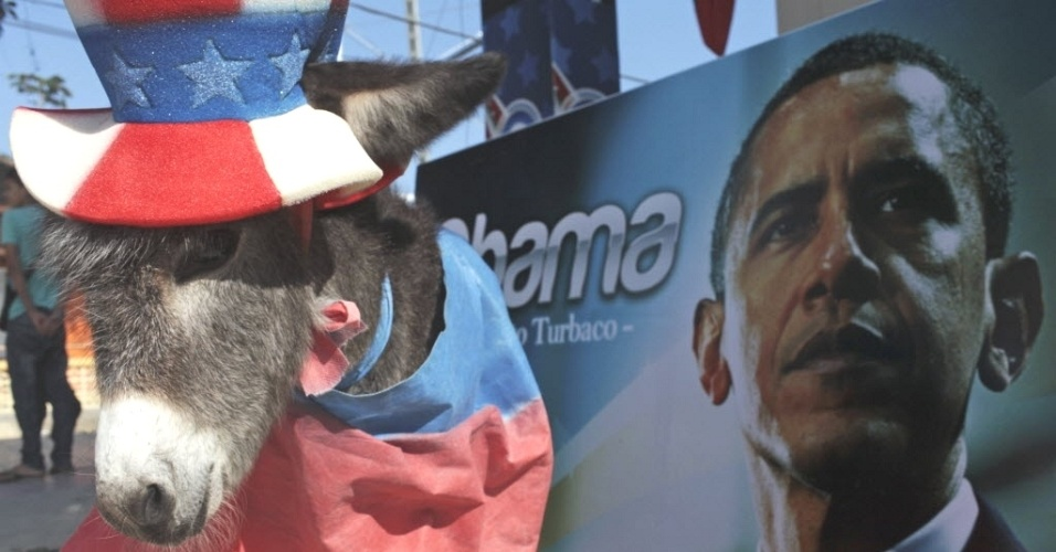 Demo, um filhote de burro, &#233; vestido como mascote do Partido Democr&#225;tico para comemorar a chegada de Obama ao Estado americano de Cartagena, onde ser&#225; realizada a 6&#170; C&#250;pula das Am&#233;ricas. O nome e o status de mascote s&#227;o coisa de seu dono, o ex-prefeito de Turbaco Silvio Carrasquilla, que se considera o maior f&#227; de Obama da Col&#244;mbia