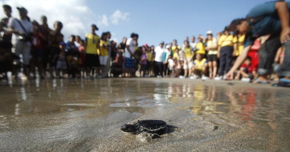 Turistas e moradores soltam tartarugas marinhas recém-nascidas na praia de Kuta, em Bali (Indonésia)