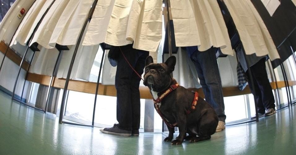 Cachorro acompanha dono em zona eleitoral de Nice (França), durante o primeiro turno da disputa presidencial no país