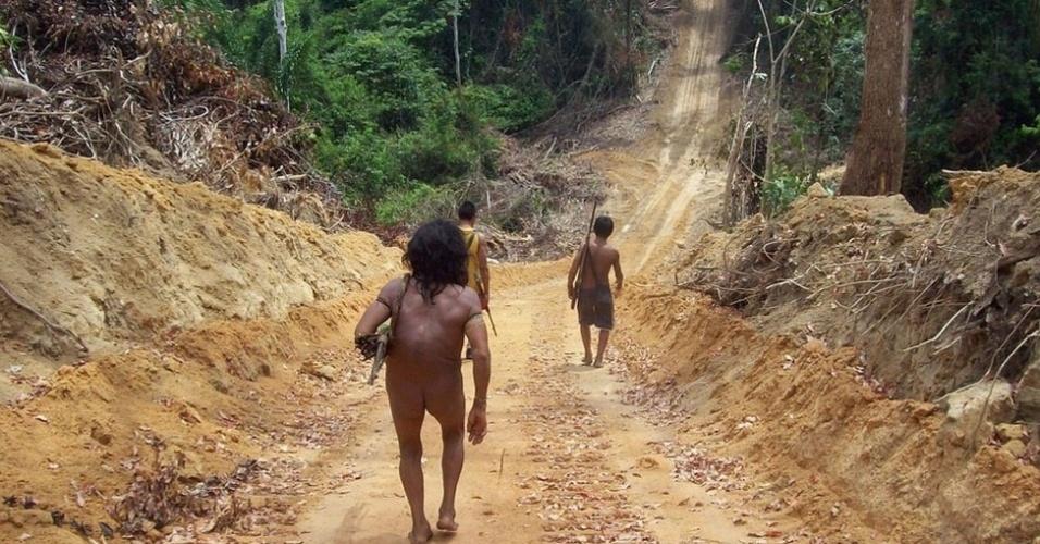 """A Survival espera conseguir pressionar o governo para que este dê mais atenção ao problema dos Awá, classificado pelo juiz José Carlos do Vale Madeira em 2009 como """"genocídio"""""""