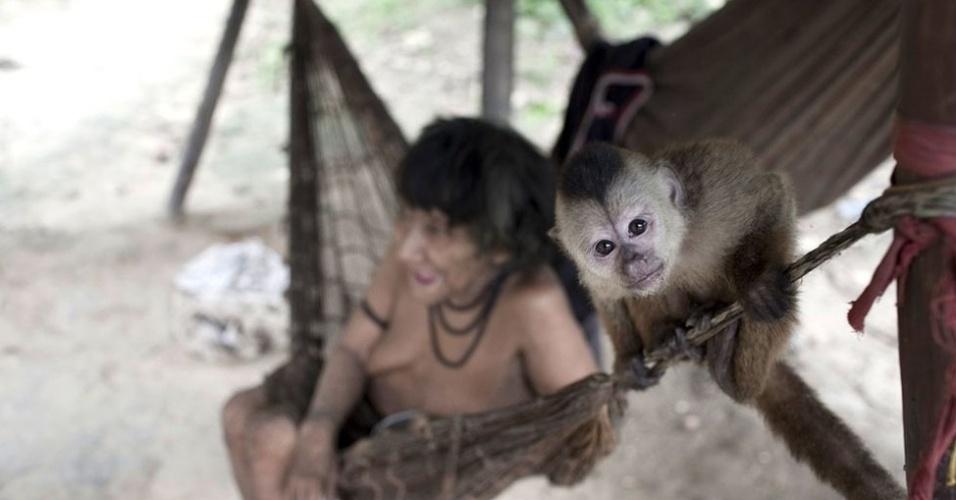 Amerintxia é fotografada com seu macaco de estimação. A tribo mantém uma ligação próxima com a fauna, adotando macacos órfãos que são incorporados às famílias. As mulheres Awá chagam a amamentá-los