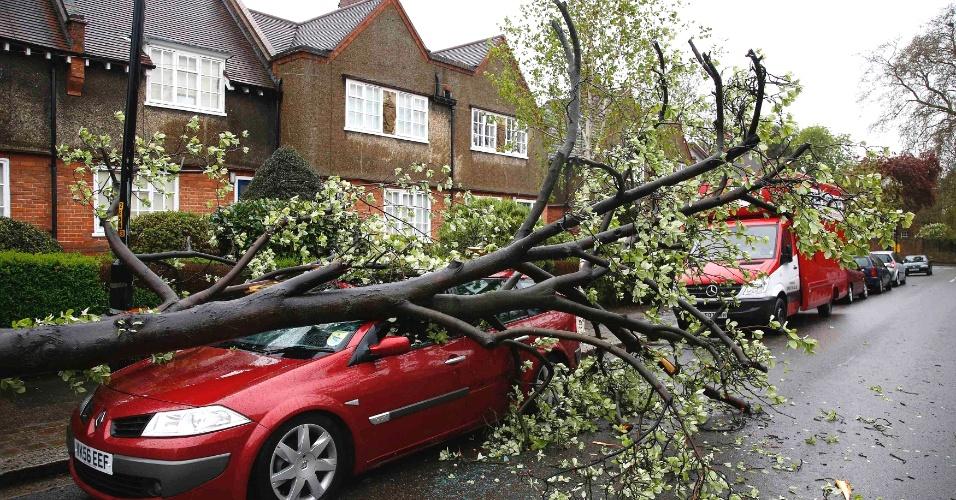 Árovre cai em carro  durante uma tempestade que atingiu Dulwich, no sul de Londres