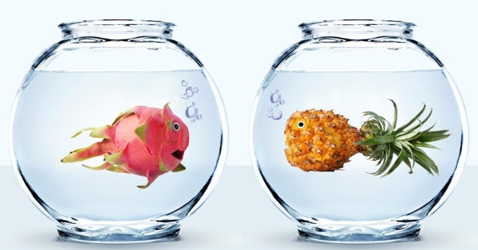 Em 2009, a fotógrafa Vanessa Dualib iniciou o projeto 'Brincando com a Comida', uma série de fotos divertidas em que alimentos se transformam em personagens. Acima, a foto 'Amor Proibido', com uma pitaia e um abacaxi
