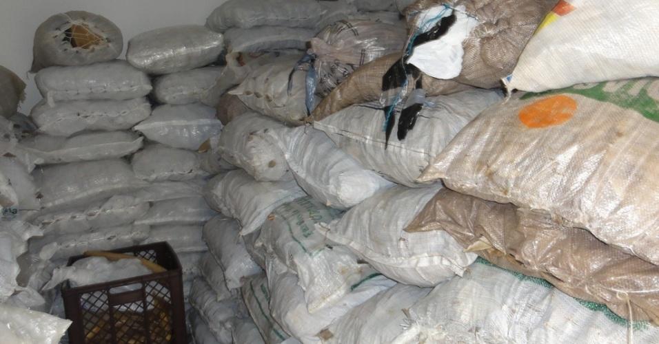 4.mai.2012 - Interior do depósito escondido de uma exportadora de pescado de Belém, no Pará, onde o Ibama encontrou 7,7 toneladas de barbatanas de tubarão. O material ilegal seriam exportado para China
