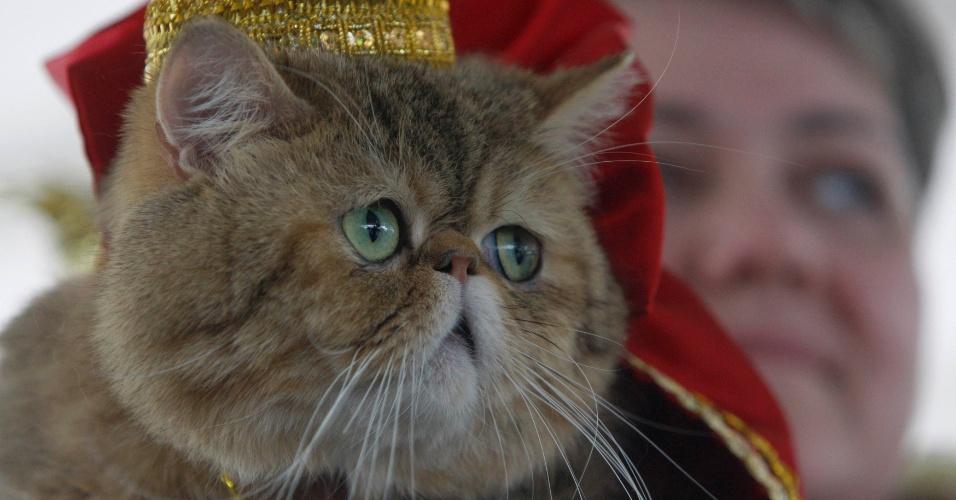 6.mai.2012 - Mulher segura um gato durante uma exibição de gatos e cachorros em Minsk, em Belarus