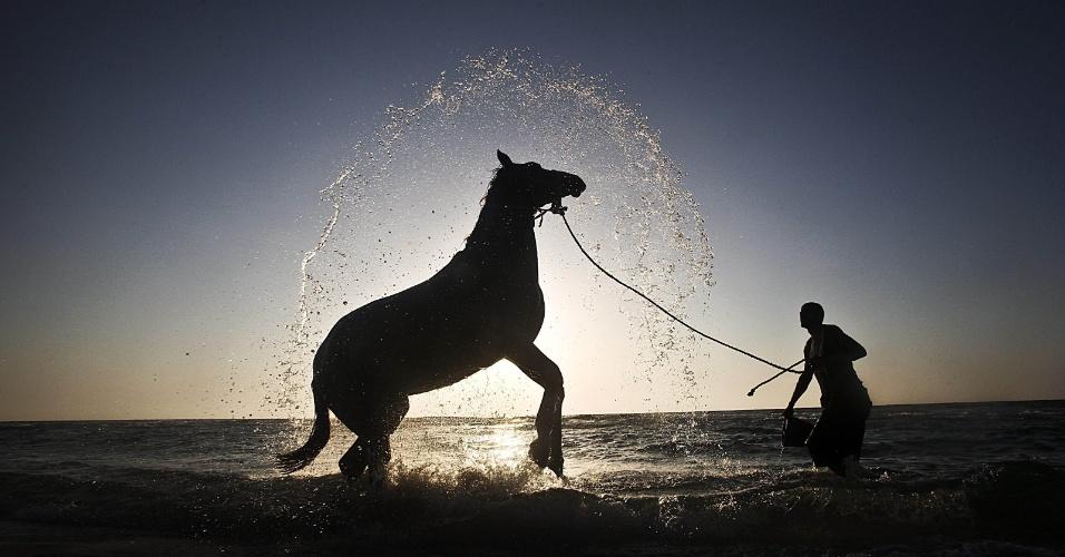 7.mai.2012 - Um homem lava seu cavalo no mar, na Faixa de Gaza, na Cisjordânia