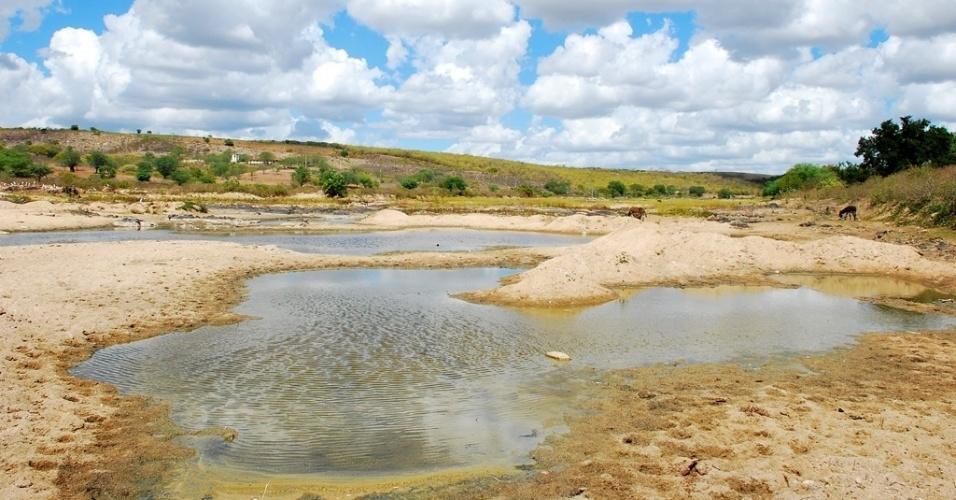 15.mai.2012 - O rio Ipanema está seco e tem apenas alguns locais com água empoçada. A seca começou a se espalhar novamente pelo Nordeste. Segundo dados das defesas civis e estaduais, mais de 750 municípios já decretaram situação de emergência e mais de 4 milhões de pessoas foram afetadas