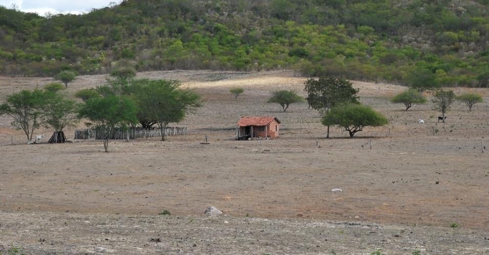 16.mai.2012 - Seca afugenta moradores em Santa Brígida (BA), que revivem época de êxodo e fuga do campo