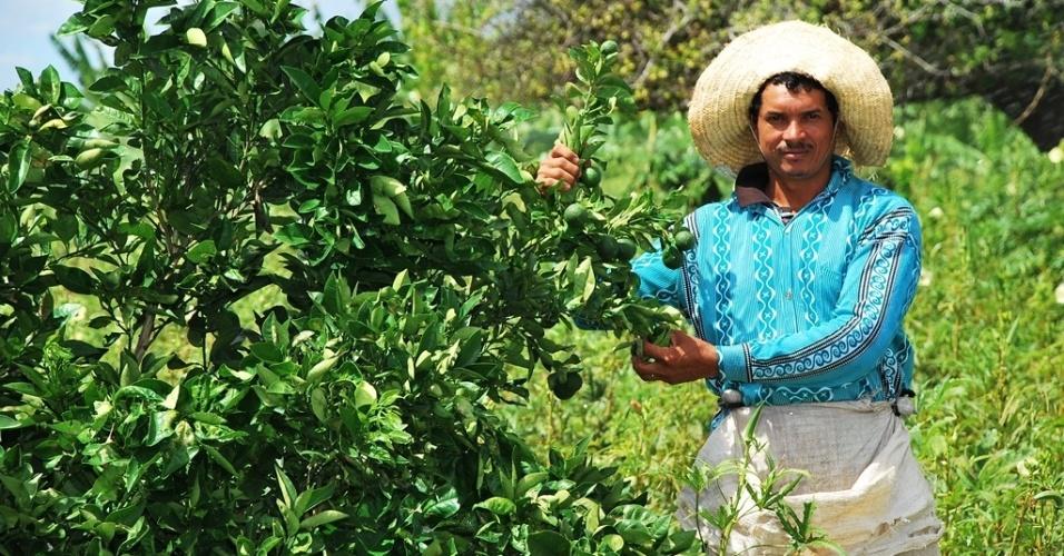 21.mai.2012 - Domingos Rito Filho, 33, celebra colheita no projeto Califórnia, que garante a plantação em Canindé do São Francisco (SE) com irrigação, mesmo durante a seca