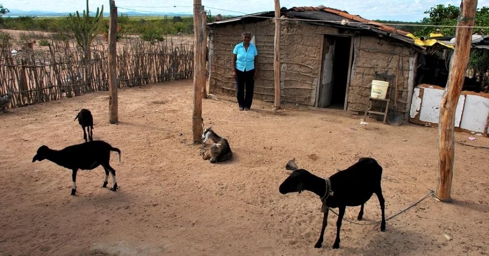 21.mai.2012 - Maria São Pedro e alguns de seus animais na pequena propriedade do povoado de Porto da Serra, no município de Glória (BA) que, mesmo estando às margens do rio São Francisco, sofre com a estiagem