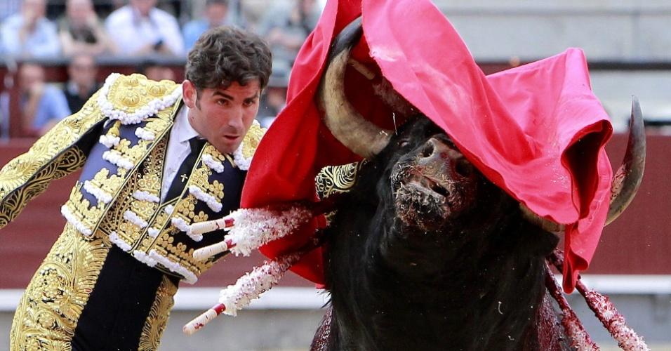 Golpe brutal do toureiro Serafín Marín durante apresentação da Festa de San Isidoro, na praça de Las Ventas, em Madri