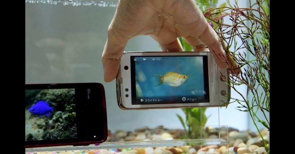 11.jan.2012 - A Fujitsu mostrou na CES 2012 o smartphone da linha Arrows, que já é comercializado no Japão. O destaque do telefone é o mesmo que o do tablet da marca: é à prova d'água. Além disso, o smartphone tem uma tela de 4,3 polegadas, uma câmera de 13,1 megapixels e 8 GB para armazenamento. A empresa não informou preço nem quando será lançado no latino-americano