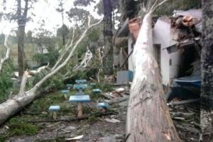 5.jun.2012 - Tempestade que atinge o Paraná desde domingo (3) causa estragos. De acordo com a Coordenadoria Estadual de Defesa Civil, o número de afetados passa de 4,8 mil. Nesta imagem é possível ver o estrago em Pinhão, no centro-sul do Estado, onde 67 casas foram danificadas e 193 pessoas afetadas