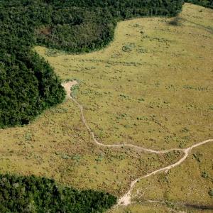 Vista aérea de área de preservação permanente com enorme parte desmatada em Nova Ubiratã, região médio-norte de Mato Grosso, em 2005