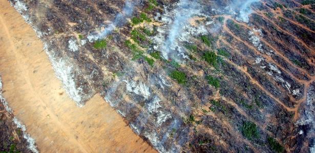 Vista aérea de área queimada em Nova Ubirata, região do meio norte de Mato Grosso, uma das cidades que mais desmatam