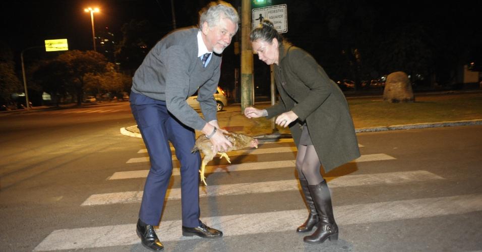 4.jun.2012 - Prefeito de Porto Alegre, José Fortunati (PDT), ajuda esposa a resgatar galinha