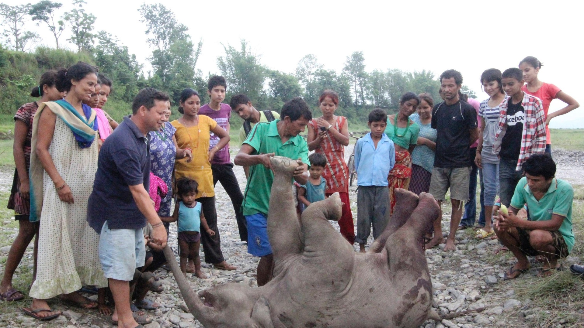 12.jun.2012 - Nepaleses cercam filhote de elefante encontrado morto na manh em Jhapa, no Nepal, devido a uma leso