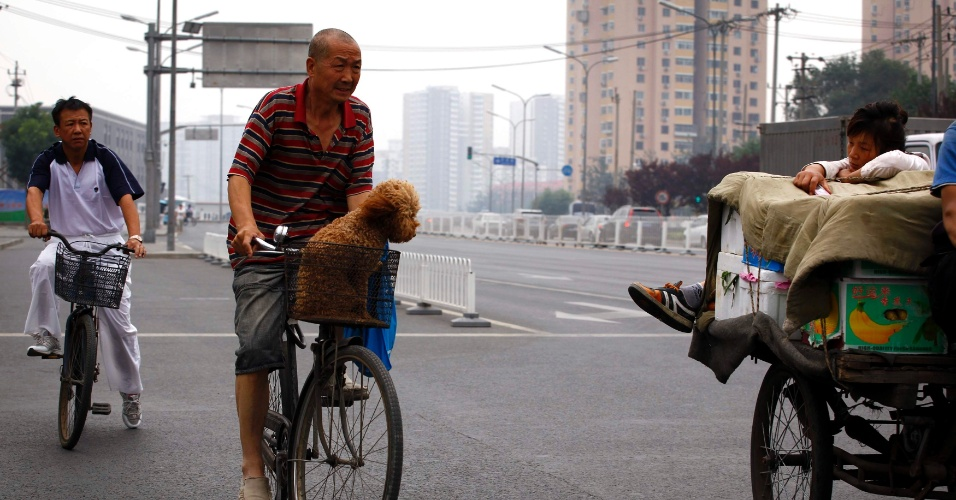 Homem leva c&#227;o em cesta de bicicleta em rua de Pequim, na China