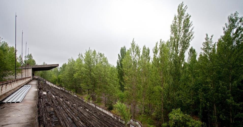 Floresta cresceu no meio do que costumava ser um estádio de futebol em Pripyat