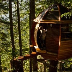 "Imagem da casa na árvore oval ""Hemloft"", do jovem carpinteiro Joel Allen"