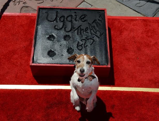 Após estrelar em O Artista, Uggie teve suas patas imortalizadas em Hollywood (25/6/12)