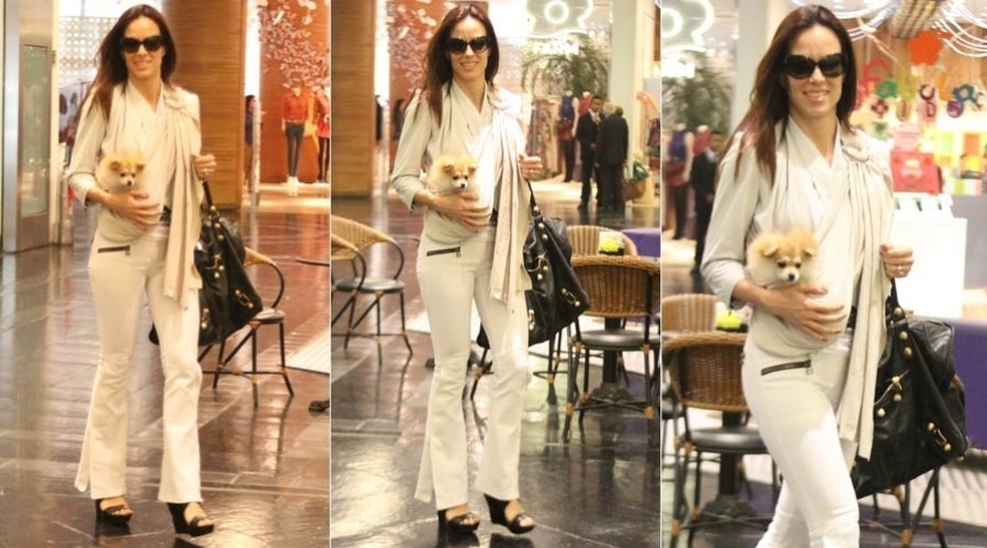 Ana Furtado passeia com cachorro no shopping em babysling (28/6/2012)