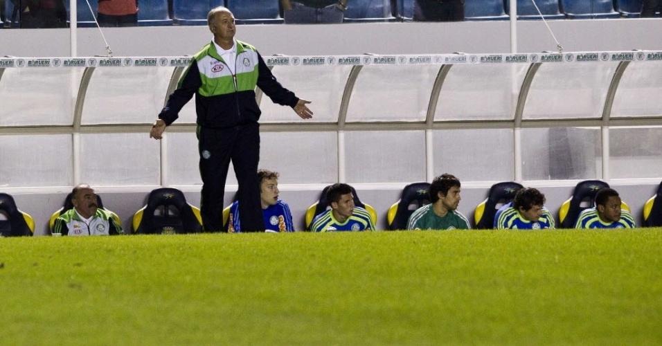 Felipão gesticula com os jogadores do Palmeiras durante a partida contra o Figueirense