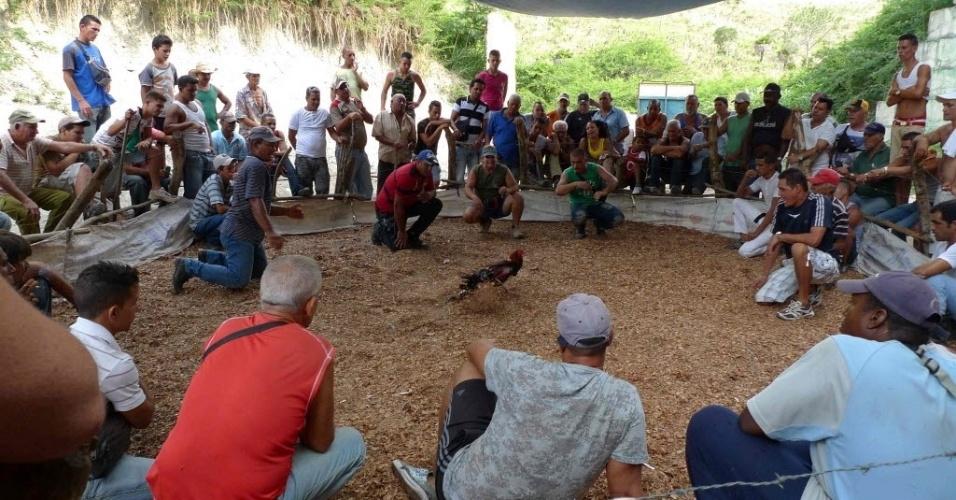 2.jul.2012 - Público acompanha briga de galo em arena na entrada de bunker antiaéreo nos subúrbios de Havana