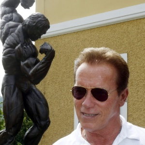 Related Pictures what do arnold schwarzenegger and csi miami s david ...