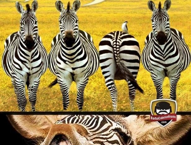 Corneta FC: Parece que deu zebra...