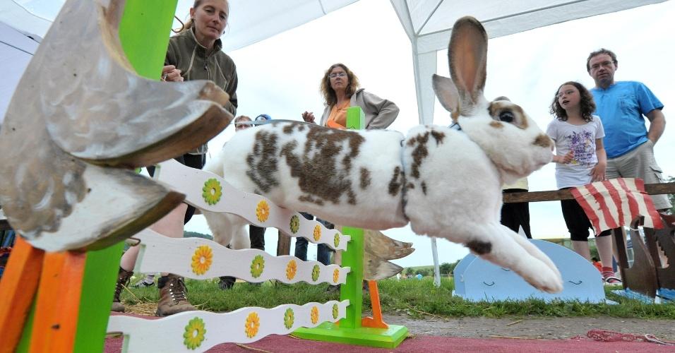 7.jul.2012 - Coelho participa de corrida de obstáculos, em Jena, no leste da Alemanha