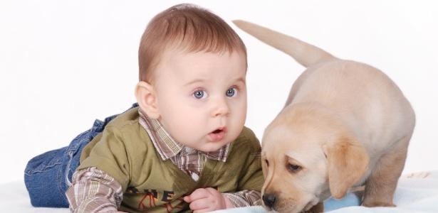 Conviver com animais éalgo muito benéfico para as pessoas, em todas as fases da vida
