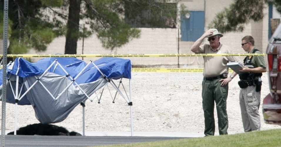 12.jul.2012- Pol&#237;cia de Las Vegas captura dois  chimpanz&#233;s que estavam soltos na regi&#227;o  noroeste da cidade