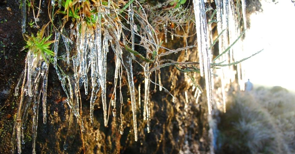 13.jul.2012 - O amanhecer registrou temperatura de zero grau em Urupema (SC), onde houve formação de geada e do fenômeno conhecido como sincelo, visto na foto