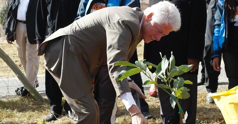 17.jul.2012 - Ex-presidente dos Estados Unidos Bill Clinton planta uma árvore em Qunu, na África do Sul, em comemoração ao Dia de Mandela