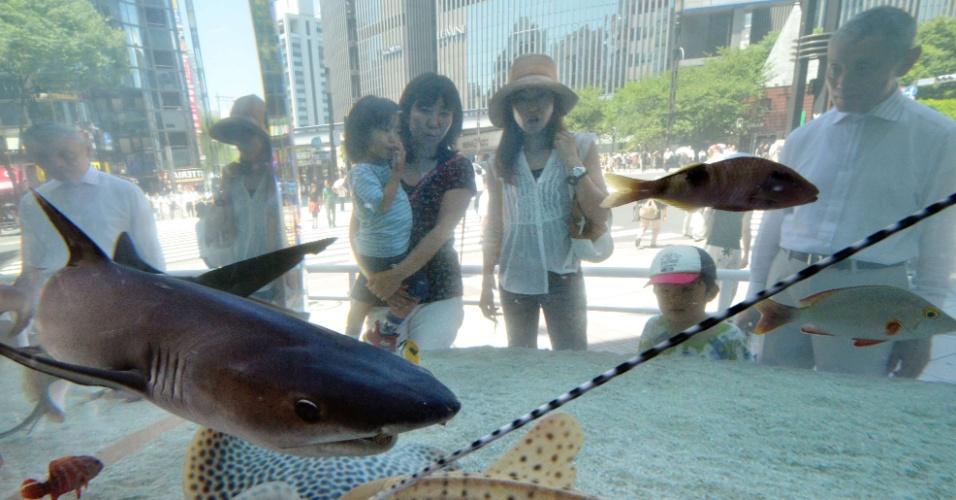 17.jul.2012 - Japoneses observam tubarão em aquário, em Tóquio, no Japão, nesta terça-feira (17)