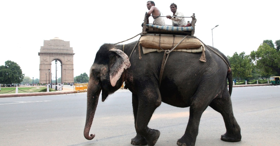 27.jul.2012 - Homens usam elefante como transporte nesta sexta-feira (27) em rua de Nova D&#233;li, na &#205;ndia 