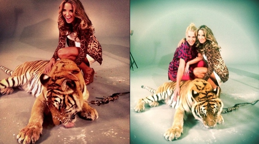 Ticiane Pinheiro e Ana Hickmann fotografaram acompanhadas de um tigre (8/8/12)