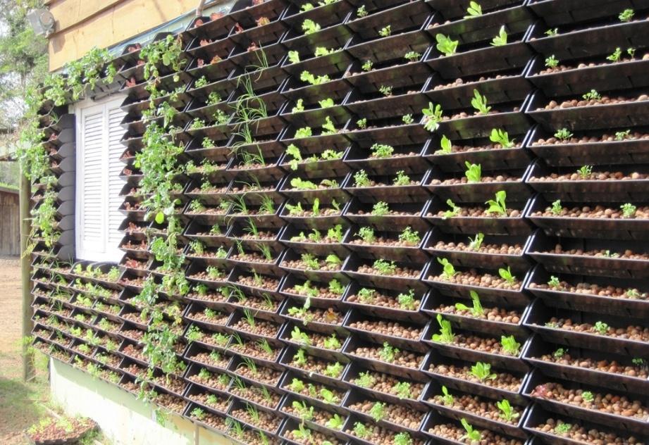 Fachada de residência com horta vertical implantada: o sistema utilizado pela Ecotelhado (www.ecotelhado.com.br) permite o cultivo de hortaliças diversas por hidroponia