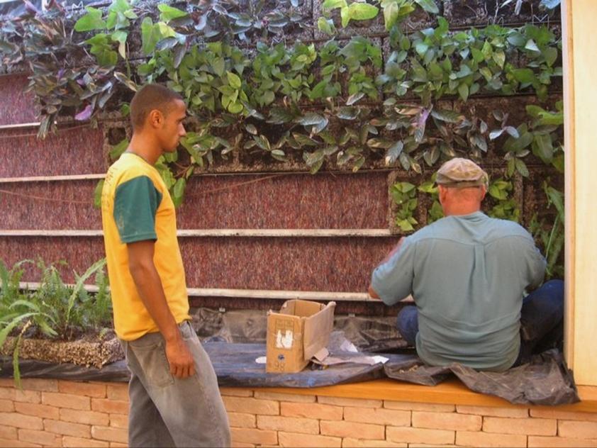 jardim vertical externo:Mais do que apenas embelezar, jardins verticais são eco-eficientes