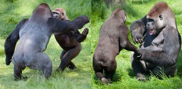 Irmãos se abraçaram no reencontro, após passarem dois anos longe um do outro