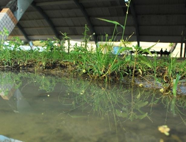 Poças de água parada, próxima à quadra poliesportiva da Escola Estadual José Correia da Silva Titara, mostram o abandono do local