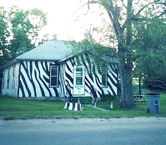 Mais uma casa que curte um visual selvagem... Deu zebra?
