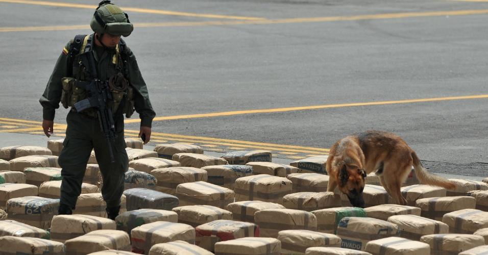 24.ago.2012 - Policial colombiano caminha entre pacotes de maconha ao lado de cão farejador na base militar de Tulua, na Colômbia